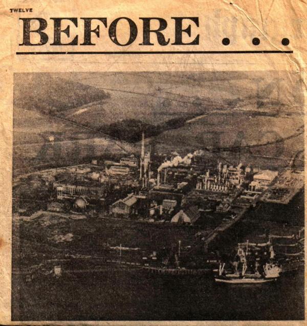 Химический завод Nypro до катастрофы