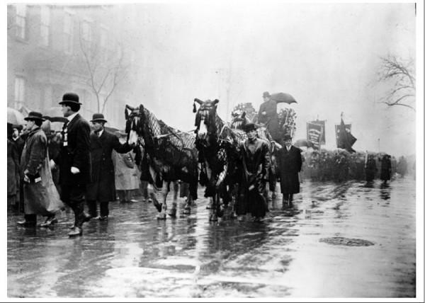 Повозка, украшенная цветами и запряженная драпированными сетью лошадьми во время молчаливой похоронной процессии 5 апреля 1911 года, везла неопознанные тела жертв пожара на фабрике Triangle. Листовки с призывом прийти на похороны, написанные на английском, идише и итальянском, собрали огромную толпу в 300 000 человек.