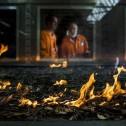 Пиротрон помогает раскрыть секреты лесных пожаров