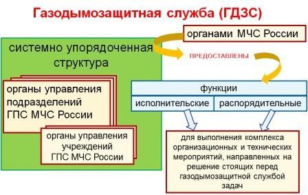 Организационная структура гдзс