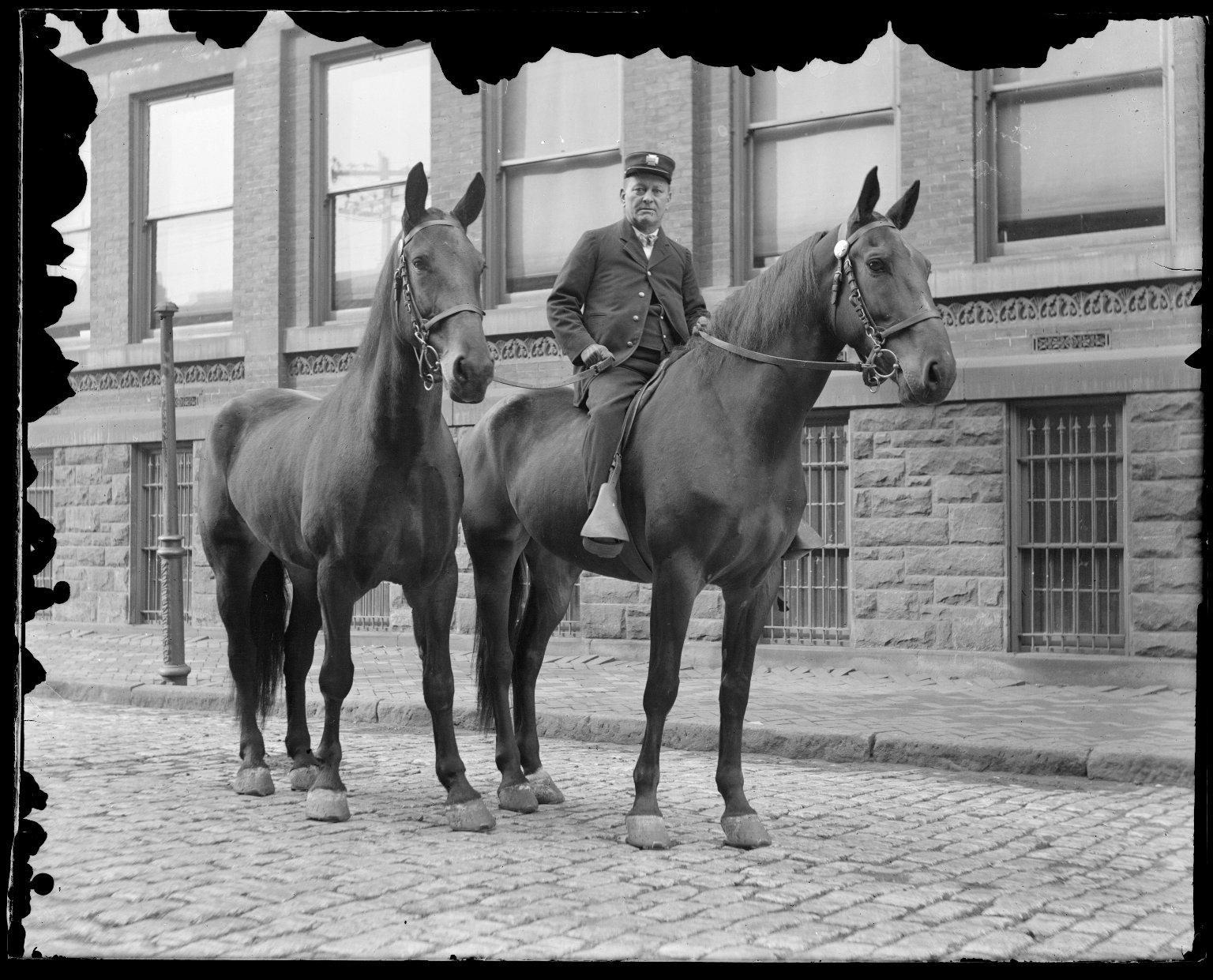 Команда перевозки рукавов пожарного депо № 11, Нью-Йорк, США. Начало 20 века