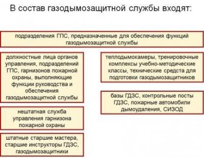 Состав газодымозащитной службы