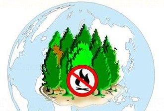 Сохранить лес от пожара