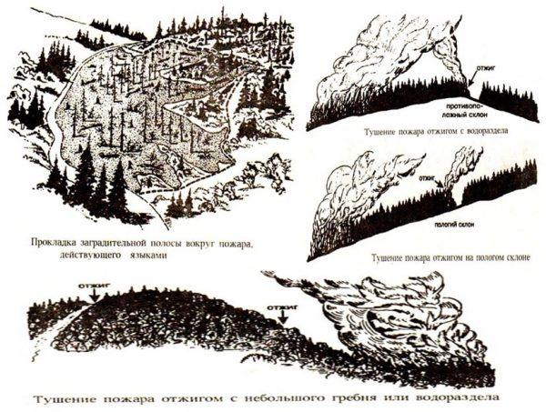 Варианты тушения лесных пожаров