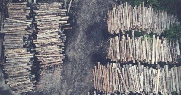 Пожарная безопасность деревообрабатывающих предприятий